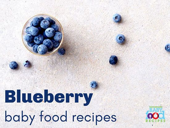 Amazing Yummy Blueberry Baby Food Recipes For Your Little Diner Ibusinesslaw Wood Chair Design Ideas Ibusinesslaworg