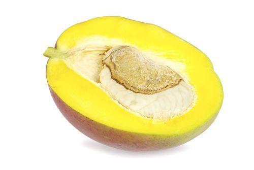 Can Baby Eat Mango?