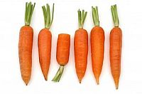 Carrots for baby food purees