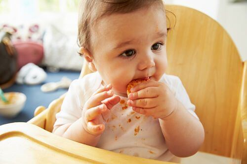 Tips for Coping with a Messy Eater