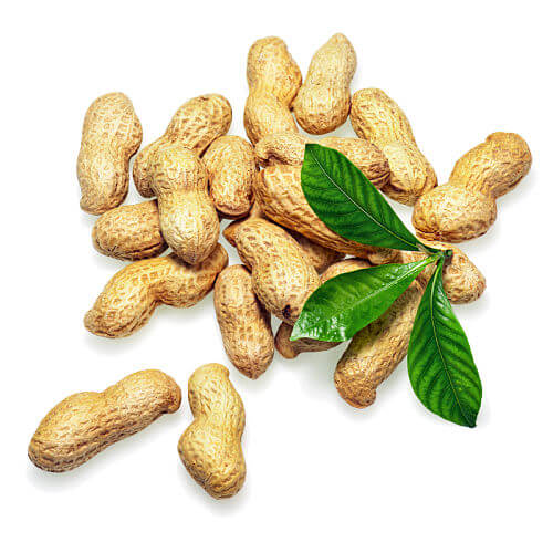 When Can Baby Eat Peanuts