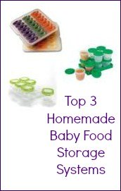 Top 3 Homemade Baby Food Storage Systems